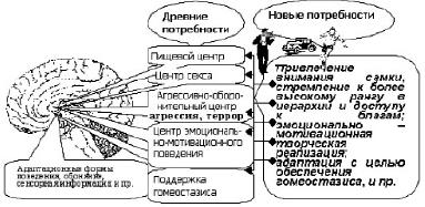 pic_4.2.3.tif