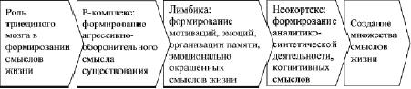 pic_6.5.2.tif